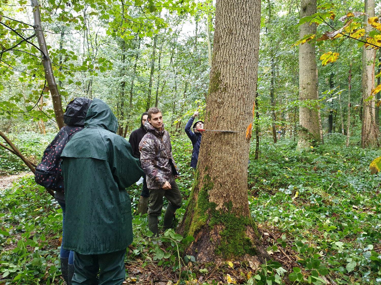 USAB-Connaissances de la forêts et des produits - dendrométrie
