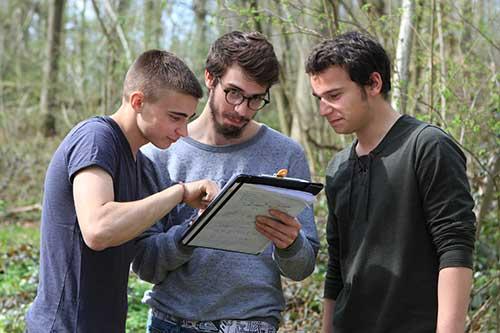 UCP4 :Identifier une station forestière dans le but d'une intervention de travaux forestiers